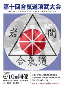 Iwama Shinshin Aiki Shurenkai International Demonstration 2017